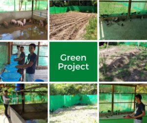 Farm Projekt