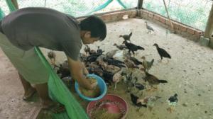 Update Farm Projekt